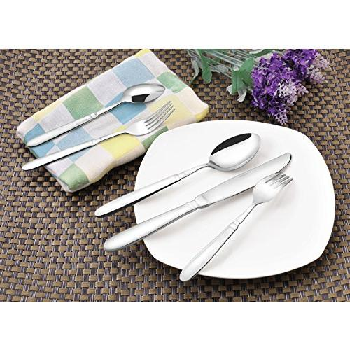 20 Flatware Stainless Steel Cutlery, Include Safe